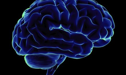 Memory Training Shown to Turn Up Brainpower