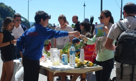 Inside Sales Tips From a Lemonade Stand